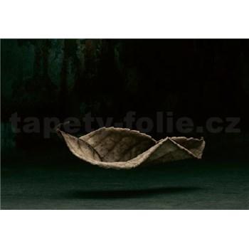 Fototapety 3D list rozmer 368 x 254 cm