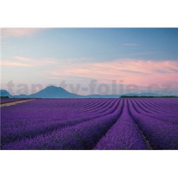 Vliesové fototapety Provence Francie rozmer 368 x 254 cm