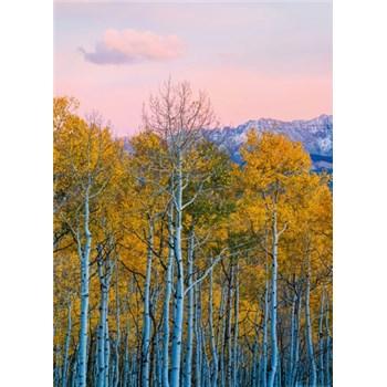 Vliesové fototapety brezy a hory rozmer 184 cm x 254 cm