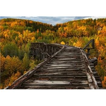 Vliesové fototapety most v lese rozmer 368 x 254 cm
