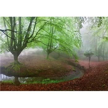 Vliesové fototapety les v mhle rozmer 368 x 254 cm