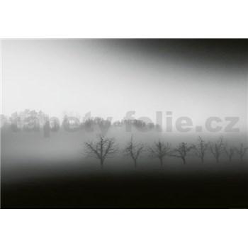 Vliesové fototapety krajina v hmle rozmer 368 x 254 cm