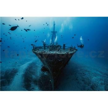 Fototapety vrak lodi rozmer 368 x 254 cm