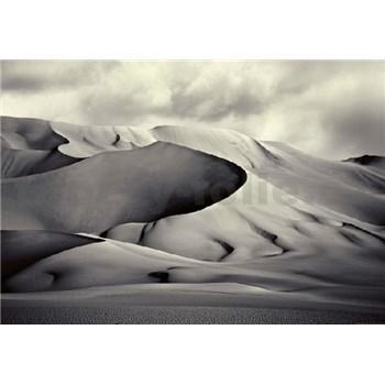 Vliesové fototapety púšť rozmer 368 x 254 cm