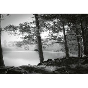 Vliesové fototapety lesní jazero rozmer 368 x 254 cm