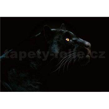 Vliesové fototapety jaguár rozmer 368 x 254 cm