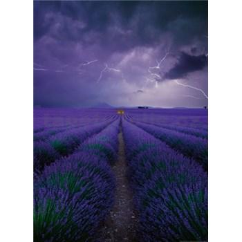 Fototapety levanduľové polia rozmer 184 x 254 cm
