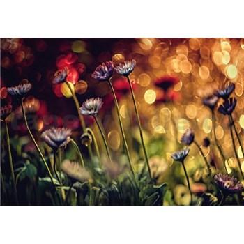 Fototapety kvetiny a svetlo rozmer 368 x 254 cm