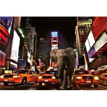 Fototapety slon v New Yorku rozmer 368 x 254 cm