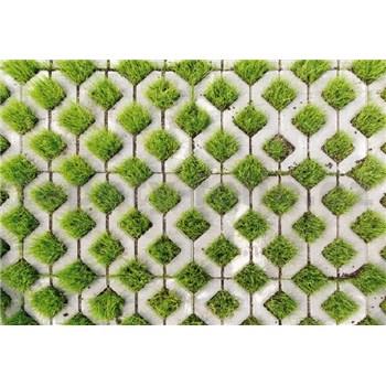 Vliesové fototapety dlažobný kameň s trávou rozmer 368 x 254 cm