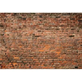 Fototapety tehlová červená stena rozmer 368 x 254 cm
