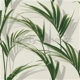 Vliesové tapety na stenu IMPOL Collection listy palmy na bielom podklade