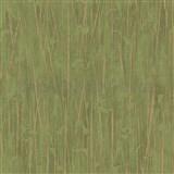 Vliesové tapety na stenu IMPOL Paradisio 2 florálny vzor zlatý na zelenom podklade