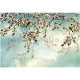 Papierové fototapety Sakura rozmer 368 cm x 254 cm