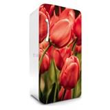Samolepiace tapety na chladničku tulipány rozmer 120 cm x 65 cm