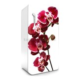 Samolepiace tapety na chladničku orchidea rozmer 120 cm x 65 cm