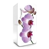 Samolepiace tapety na chladničku fialová orchidea rozmer 120 cm x 65 cm