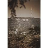Luxusné vliesové fototapety Los Angeles - sépia, rozmer 186 x 270cm
