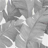 Vliesové tapety na stenu Avalon veľké listy strieborno-čierne na bielom podklade
