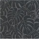 Vliesové tapety na stenu Ella veľké  listy čierno-strieborné