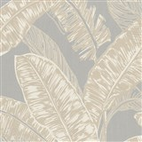 Vliesové tapety na stenu Felicita listy béžové na sivom podklade