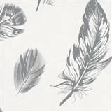 Vliesové tapety na stenu Felicita perie sivé na bielom podklade