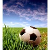 Vliesové fototapety futbalová lopta rozmer 225 cm x 250 cm