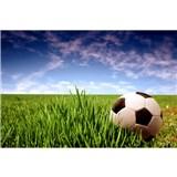 Vliesové fototapety futbalová lopta rozmer 375 cm x 250 cm