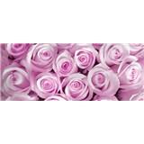 Vliesové fototapety ruže ružové