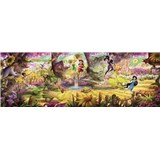 Fototapety Disney Víly les rozmer 368 cm x 127 cm
