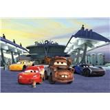 Fototapety Disney Cars 3 Mc Queen a Burák stanovisko rozmer 368 cm x 254 cm