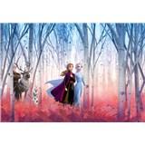 Fototapety Disney Frozen II priatelia navždy rozmer 368 cm x 254 cm