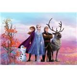 Fototapety Disney Frozen II priatelia rozmer 368 cm x 254 cm