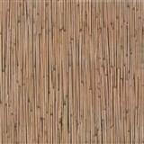 Samolepiace tapety - bambus, metráž, šírka 67,5 cm, návin 15m,