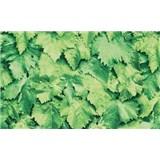 Samolepiace tapety - lístie zelené, metráž, šírka 67,5 cm, návin 15m,