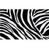 Samolepiace tapety - zebra 90 cm x 15 m