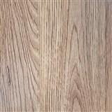 Samolepiaca fólia dub prírodný - 45 cm x 15 m