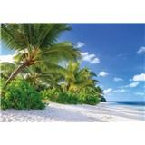 Fototapety palmy na pláži, rozmer 368 x 254 cm
