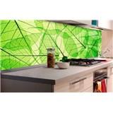 Samolepiace tapety za kuchynskú linku listové žily rozmer 180 cm x 60 cm