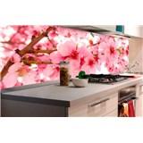 Samolepiace tapety za kuchynskú linku jabloňové kvety rozmer 180 cm x 60 cm