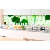 Samolepiace tapety za kuchynskú linku zelené listy rozmer 350 cm x 60 cm