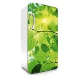 Samolepiace tapety na chladničku zelené listy rozmer 120 cm x 65 cm