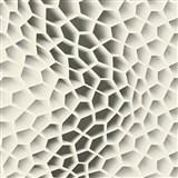 Vliesové tapety na stenu Harmony in Motion by Mac Stopa 3D plástu sivé