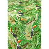 Obrusy návin 20 m x 140 cm jungle s tukany s textilnou štruktúrou