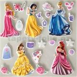 3D samolepky na stenu detské princezny Disney