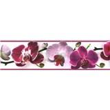 Samolepiaca bordúra kvety orchideje fialové 8,3 cm x 5 m