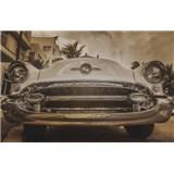 Luxusné vliesové fototapety Miami - sépia, rozmer 418,5 x 270cm