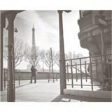 Luxusné vliesové fototapety Paríž - farebné, rozmer 325,5 x 270cm