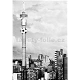 Luxusné vliesové fototapety Johannesburg - čiernobiele, rozmer 186 x 270cm