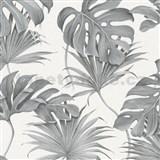 Vliesové tapety na stenu New Spirit palmové listy a monstera sivé na bielom podklade